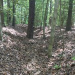 Civil War Trenches