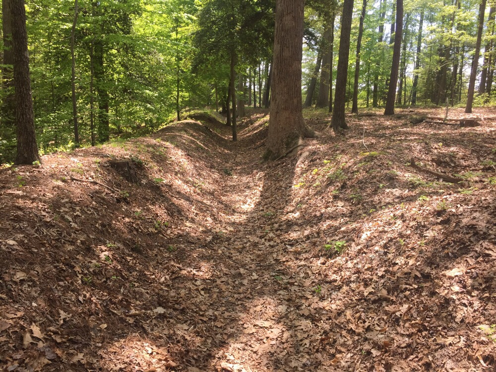 Confederate Trenches