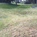Crater, Petersburg Battlefield