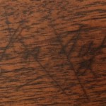 Richmond Carbine, John Taylor 9th Virginia Cavalry, Company A